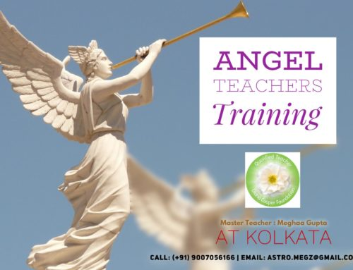 Angel Teacher Training – January 2020 in India