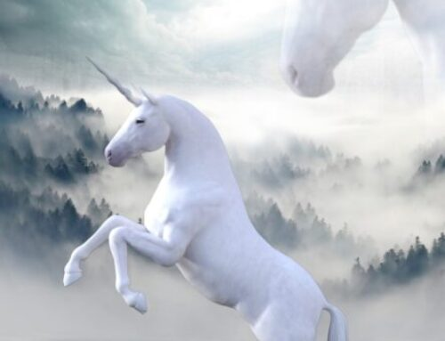 Five Ways the Unicorns can Enrich your Life